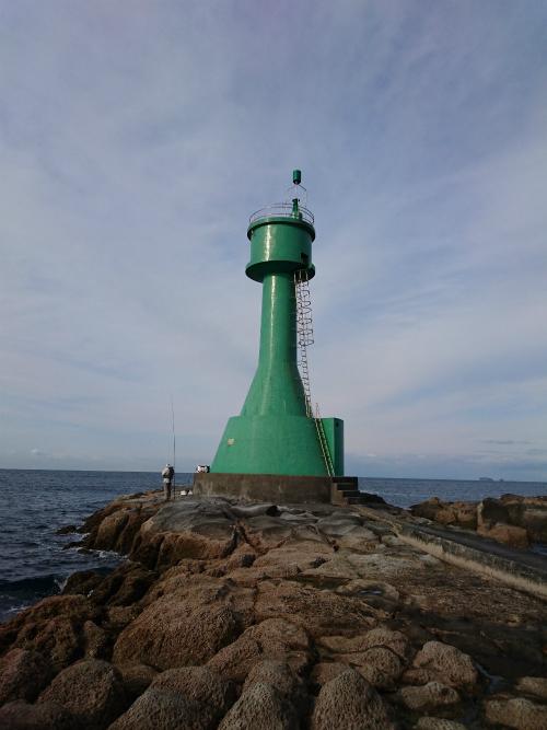 能瀬本島でクロ釣りのはずが・・・イルカを掛けました(笑)