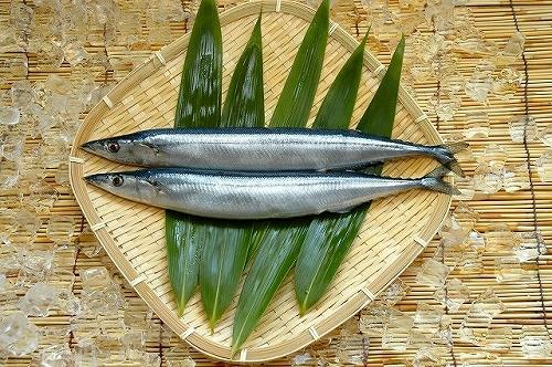 北海道食材のプロが教える。お店で選んではいけない!危険な鮮魚の見わけ方