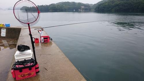 近場の時津町 子々川(ししがわ)港の波止でメイタ釣り
